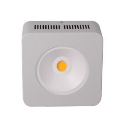 200W CREE SOL LED Bitki Lambası Full Spectrum