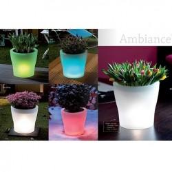 Elho - AMBIANCE Işıklı Saksı - Kırmızı, Yeşil, Mavi, Beyaz
