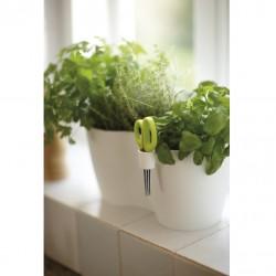 Elho - BRUSSELS Herbs Duo Large Yeşil Saksı